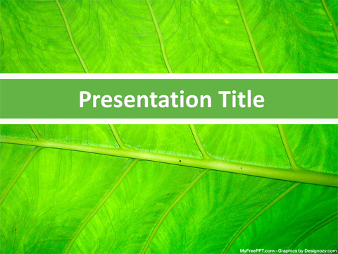 Leaf Closeup PowerPoint Template
