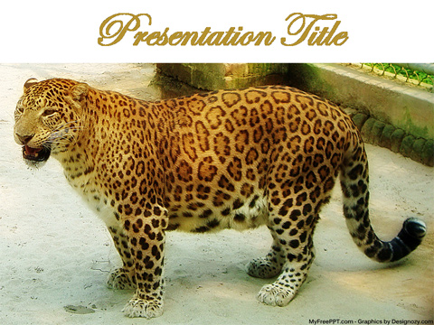 Free Leopard PowerPoint Template
