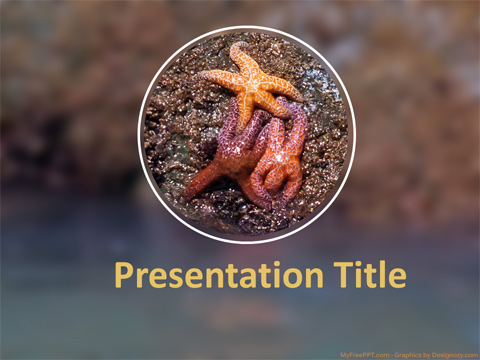 Star Fish PowerPoint Template
