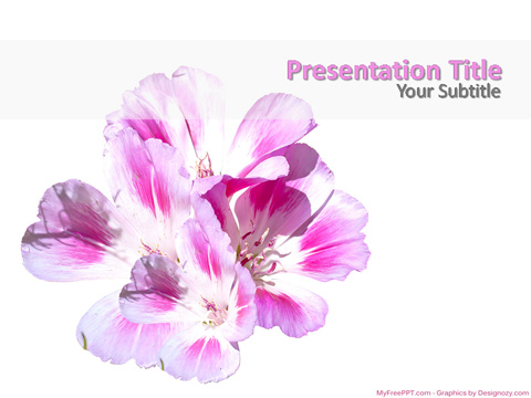 Free Beautiful Flowers PowerPoint Template