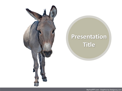 Donkey PowerPoint Template