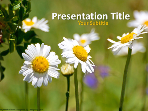 Fresh Flowers PowerPoint Template