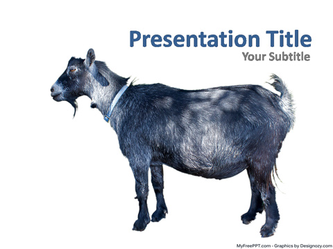 Free Goat PowerPoint Template