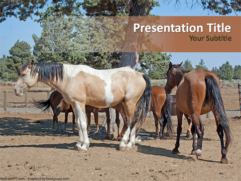 Horse Farming PowerPoint Template