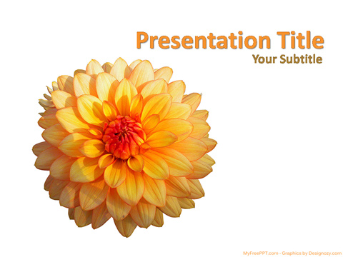 Free Marigold Flower PowerPoint Template
