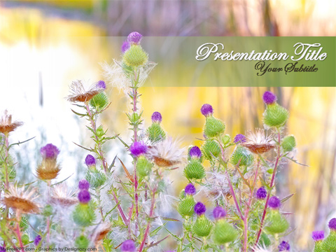 Wild Flowers PowerPoint Template