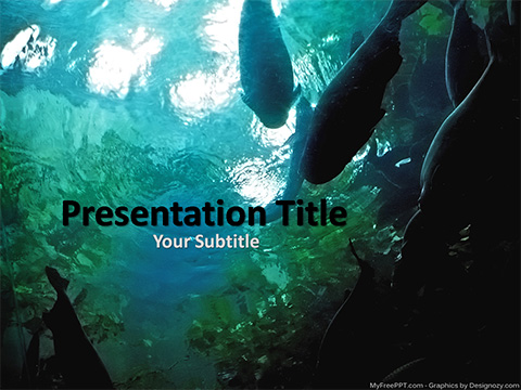 Free Aquarium Fishes PowerPoint Template