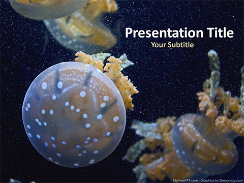Aquarium Jelly Fishes PowerPoint Template