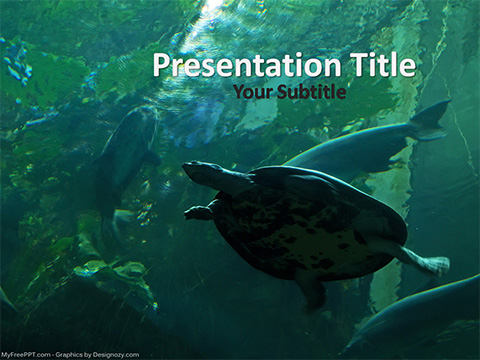 Aquarium PowerPoint Template