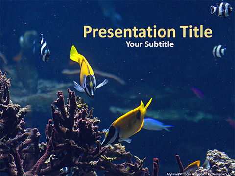 Free Beautiful Fishes PowerPoint Template