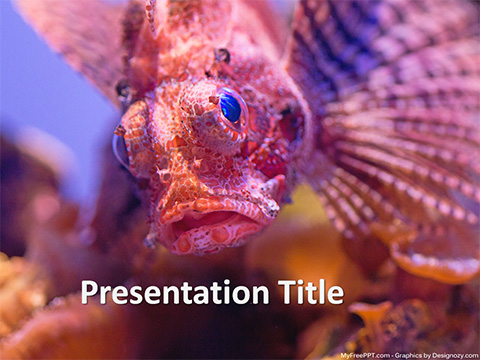 Fish Face PowerPoint Template