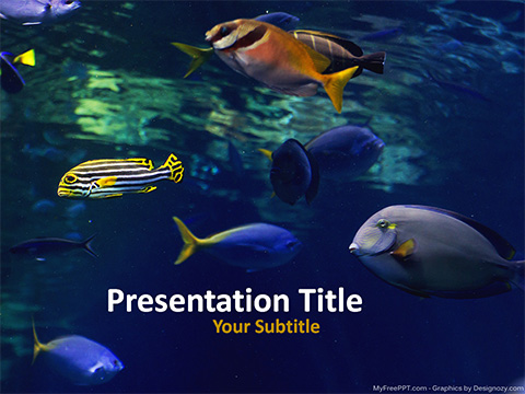 Fishes PowerPoint Template