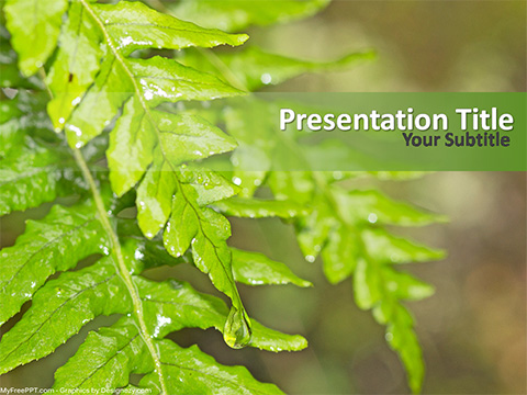 Free Fresh Leaves PowerPoint Template