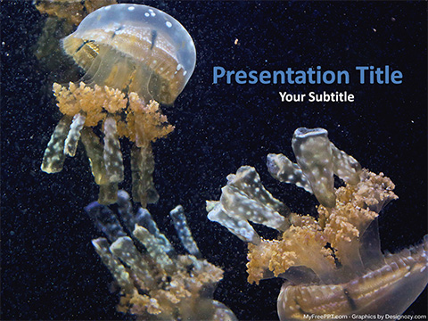 Jellyfishes PowerPoint Template