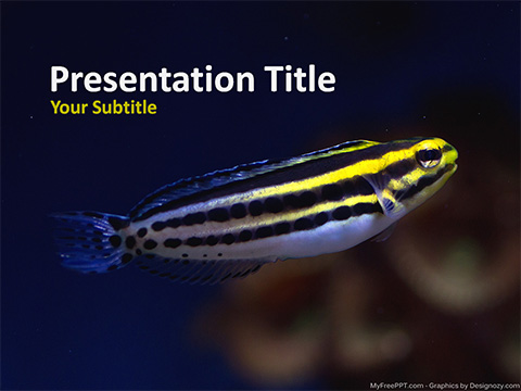 Free Small Fish PowerPoint Template