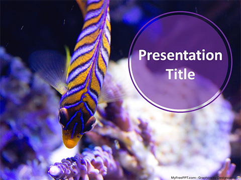 Free Striped Fish PowerPoint Template