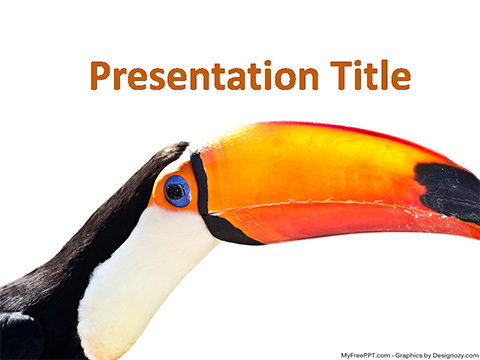 Toucan Bird PowerPoint Template