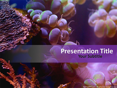 Free Underwater Coral PowerPoint Template