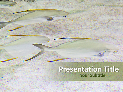 Underwater Fishes PowerPoint Template