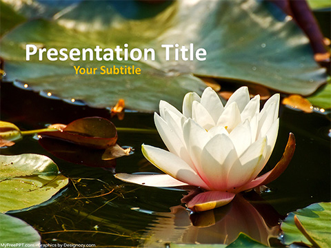 Free Waterlily Flower PowerPoint Template