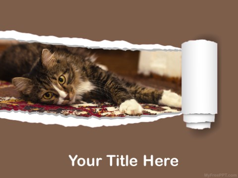 Free Cat As Pet PPT Template
