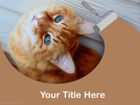 Free Cat Behaviour PPT Template