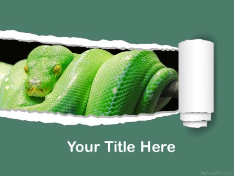 Free Green Tree Python PPT Template