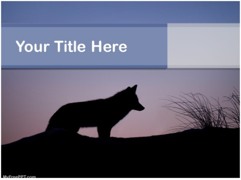Free Nocturnal Animals PPT Template